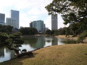 A tidal pond of Hama-rikyu garden