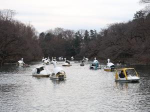 スワンボート Swan boat