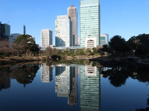 Pond and skyscrapers
