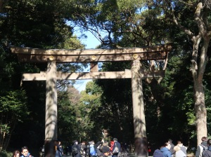 Torii gate of Meiji shrine