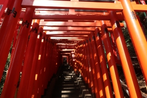 Red torii gates tunnel along the steps