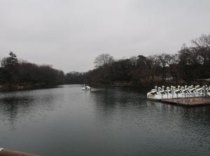 Center pond of the park
