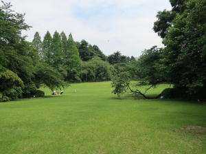 Landscape garden (English style)