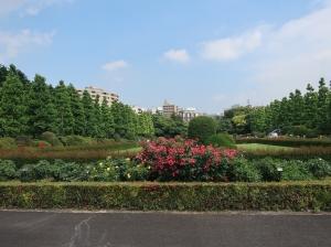 rose garden formal garden (French style)