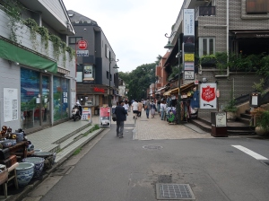 A road to Inokashira park