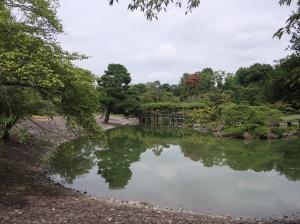 仙洞御所庭園の南池 Suuth pond in Sento Imperial Palace.
