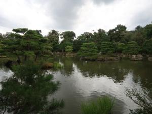 鏡湖池 金閣側から見た池は少し寂しげです The pond of Kyoko-chi, The scene from the pavilion looks a little bit lonely.